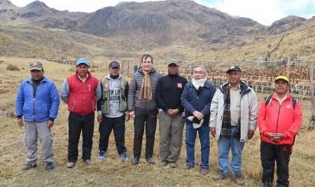 CHACCU DE LA VICUÑA ORGANIZADO POR LA UAP SE REALIZÓ CON ÉXITO EN HUANCAVELICA