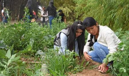 UAP HUÁNUCO PARTICIPA EN CAMPAÑA DE REFORESTACIÓN DE MÁS DE 100 ÁRBOLES